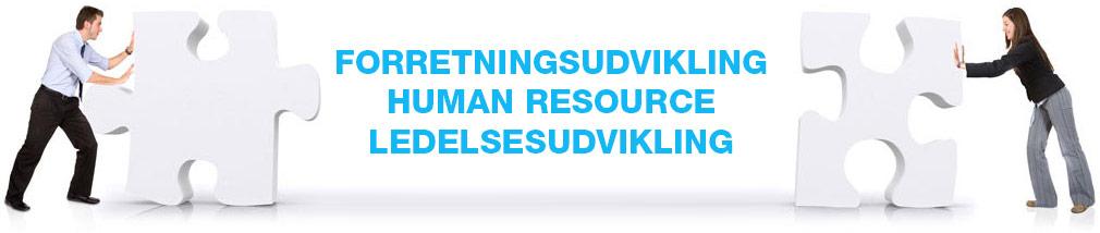 Forretningsudvikling Human Resource Ledelsesudvikling